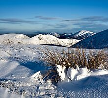 Winter Drifts by Paul Whittingham
