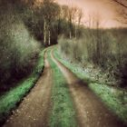 Le chemin des dames - 2011 - Original Signed Numbered Fine Art Photography Print 6x6 (15x15cm)  by Yann Pendaries