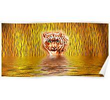 Tiger Upon Reflection Poster