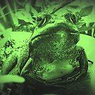 Love bein' green! by sillyfrog