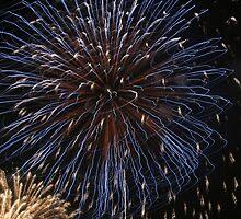 Fireworks over Tokyo - Hanabi in august by Nasko .