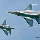 F-16s by Turtle6