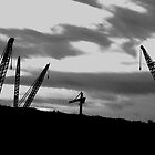 Cranes..............They're coming!! by the57man