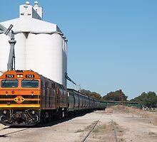 Grain Train by Matthew Reid