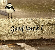 Bird good luck card by Esther  Moliné