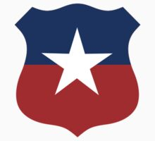 Chilean Air Force Insignia by warbirdwear