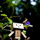 Danbo the Adventurer by jughead149