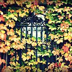 Dartmouth Ivy by kflanary
