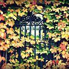 Dartmouth Ivy by kflanary