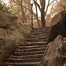 Stone Steps, Central Park by APhillips