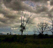 Stormy Weather by myraj