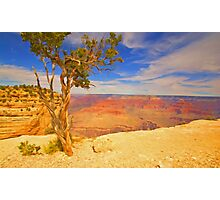 """Alone On The Rim"" Photographic Print"