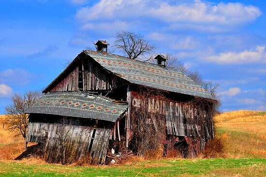Mail Pouch Barn in Perry County, Ohio by Chad Wilkins