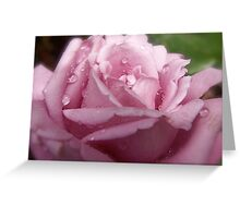 Rain Drops on my Petals. Greeting Card