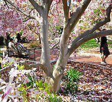 春 (Spring) by Matsumoto
