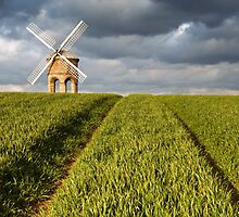 Chesterton Windmill by Steve  Liptrot