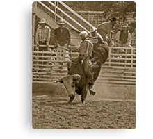 A Rodeo Cowboy Riding His Bull Canvas Print