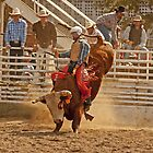 Rodeo Cowboy Riding a Bull by Buckwhite