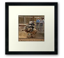 Contortionist Bull Trying to Throw Its Rider Framed Print