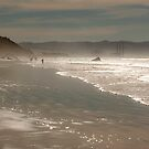 Morro Bay Beach by Buckwhite