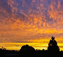 Sunset out the front of my house by burrster