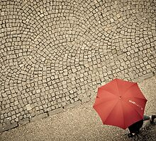 Rain and Cobblestones by LauraZim