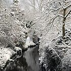 Snow River by Ashley Wells