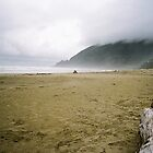Manzanita Beach by cratermoon