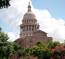 Texas State Capitol in Austin by jgray1975