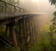 Noogee Trestle Bridge by cherryw