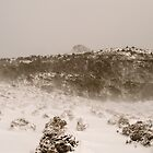 Blizzard near Mt Ossa Tasmania by cherryw