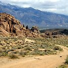Alabama Hills Dirt by marilyn diaz