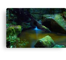 The Pond - Terrace Falls Canvas Print