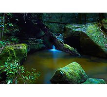 The Pond - Terrace Falls Photographic Print