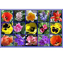 Flowers of Spring Collage Photographic Print