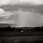 Isolated downpour - black and white by xtalline