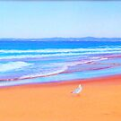Redhead Beach looking South, Newcastle, NSW Australia by Carole Elliott
