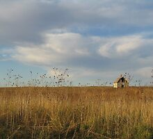 Nebraska in the Fall by Timothy Alberry