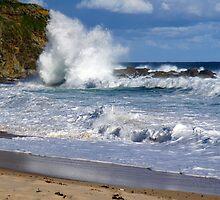Ocean Fury by Arthur Koole
