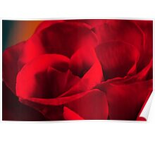 Satin-red rose petals Poster