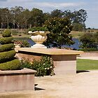Formal Garden - Hunter Valley Gardens Series by reflector
