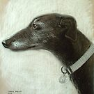 "Grey Hound ~ ""Fancy"" by Simon Groves"