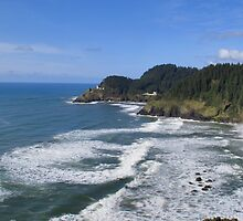 Heceta Head and coastline, Oregon by OregonCurly