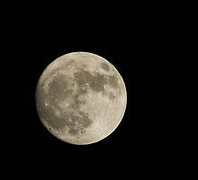 Moon by Matt Green