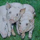 Three little pigs by Astrid de Cock