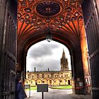 Vaulted Ceiling - Oxford by Victoria limerick