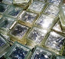 glass bricks by fifthjc