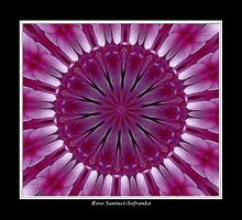 Purple Phlox Kaleidoscope #1 by Rose Santuci-Sofranko