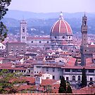 Skyline, Florence, Italy by johnrf
