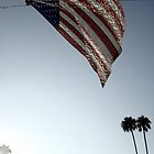 Stars and Stripes - Burbank, CA by Barnewitz